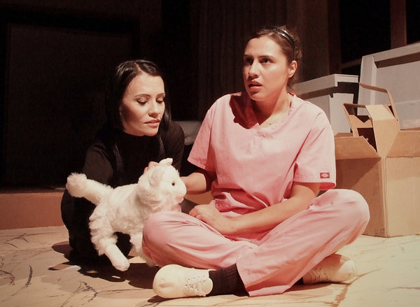 la-et-cm-theater-review-a-cat-named-mercy-at-c-001